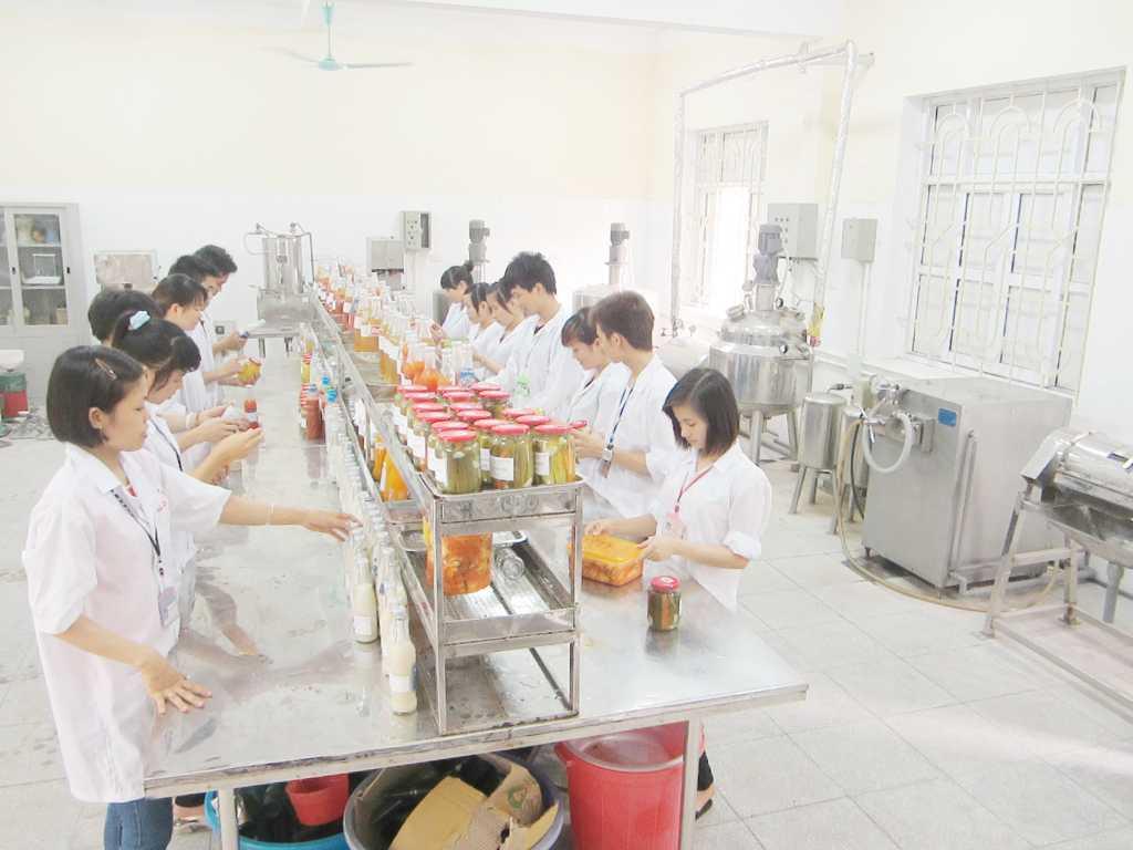 Sản phẩm thực hành của sinh viên tại xưởng thực hành sản xuất rau quả trong Nhà trường